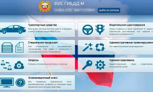 ФИС ГИБДД — структура и функции системы